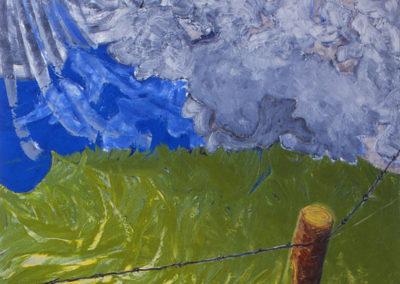 olieverf schilderij van gras en wolken gemaakt door WIm Konings