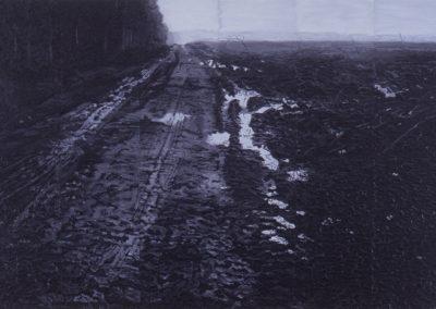 Landschapstudie, 1999