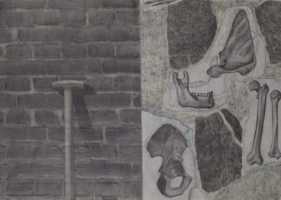 muur met collage van botten van Wim Konings in een tekening