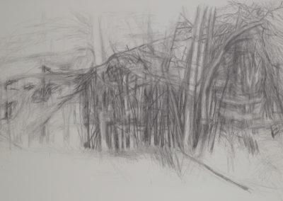 tekening van een bos bij rekken, onderdeel van een serie van drie van Wim Konings