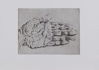 Hand (main de l'artiste), 2010